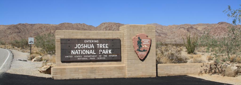 Im Joshua Tree National